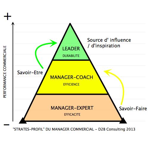 Le Manager Commercial Et La Performance Commerciale D2b