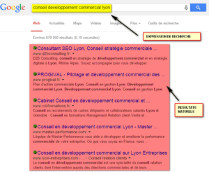 page résultats Google référencement naturel
