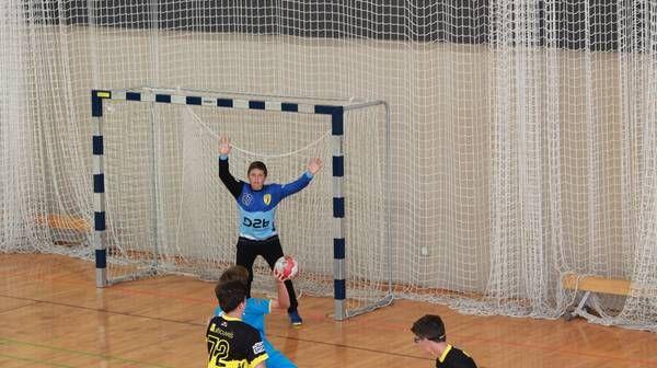 handball Tassin Brindas D2b